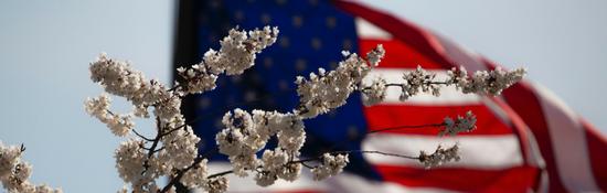 Пакет документов для оформления брака на территории США